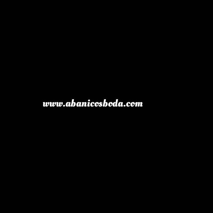 Imagen Abanico Calado 19 cm Abanicos Calados 19 cm NEGRO (Últimas Unidades)-RE